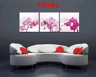 Tranh canvas bộ 3 TT014