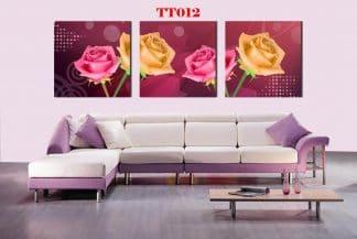 Tranh canvas bộ 3 TT012